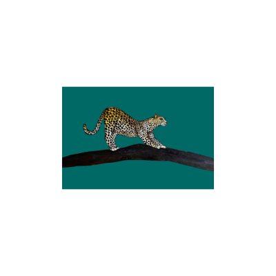 Luanna Leopard A4 print
