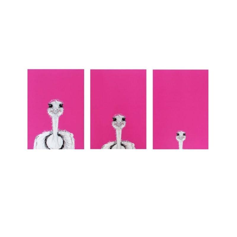 Camilla Pink Ostrich Print Set